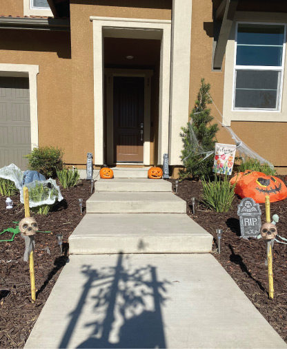 pumpkins on porches and walkways